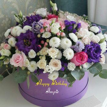 Happy Birthday Impie