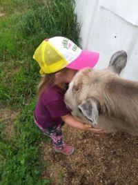 she loves all  animals