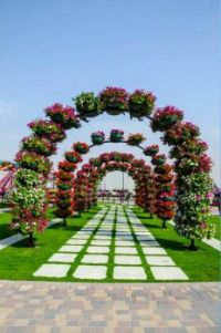 One of the most beautiful and biggest natural flower garden in the world,