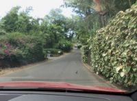 The Road to La Perouse, Maui