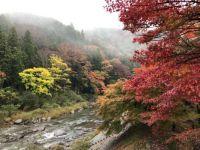 Korankei (香嵐渓, Kōrankei) , Japan