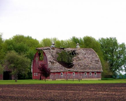 Minnesota Barn