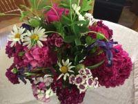 Farmer's Market flowers 060521