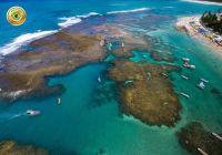 Brasil - Piscinas de Marogogi (Alagoas)