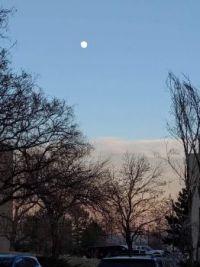 Good Afternoon Moon