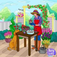 Colorfull Garden Creations