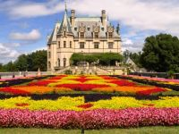 Floral Carpet at the Biltmore Estate 1