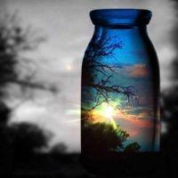 Bottle reflection