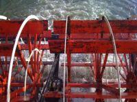 Ochee-river-boat-paddle-TN