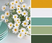 Daisies and Dishes