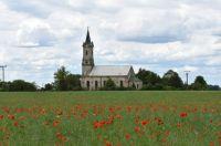 Makové pole s kostelem