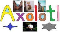 wobblybear's who's here? 201 - Axolotl (medium)
