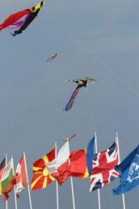 Flag and Kite Display