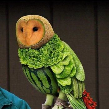 An owl made out of vege and fruit
