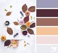 Autumn Colors November 23 / Design Seeds