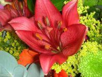 flowers for K