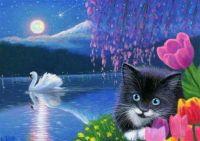 Kitten and swan