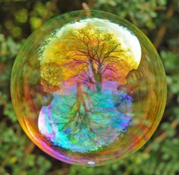 Live like your in a bubble.