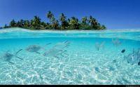 Maldives underwater