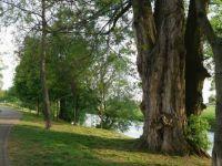 Na břehu řeky Svratky