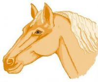 Horse-Epainting