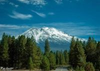 Mt. Shasta from Weed Ca.