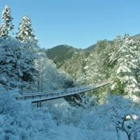 Snowy bridge in Japan