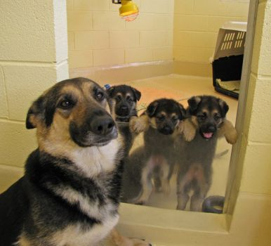"""C'mon Mom, let us out to play..!!"""