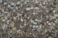 Saltburn Pebbles