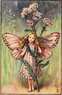 The Yarrow Fairy (mini)