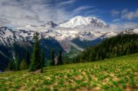 Beautiful Mount Rainier National Park, Washington