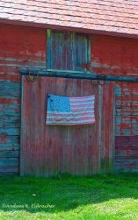 AE PATRIOT SHED