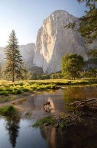 Yosemite National Park, CA   6038