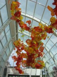 Dale Chihuly Glasshouse, Seattle