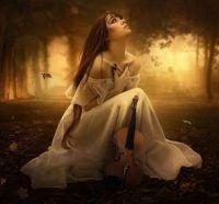 4  ~  'Violin Souls in Fall'