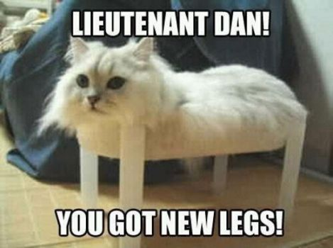 Lt. Dan Has New Legs!