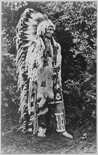Umapine (Wakonkonwelasonmi), a Cayuse chief