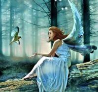 Fairy wall art