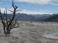Yellowstone NP 2013