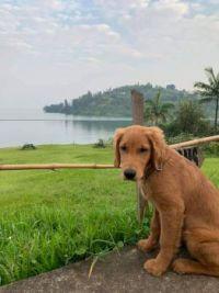 Covie at Lake Kivu