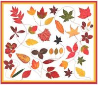 All Fall Leaves