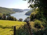 River Dart from Greenway, Devon UK