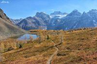 mount-fay-Banff-Larch-Valley-ten-peaks