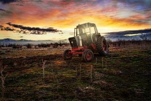 Morning Tractor