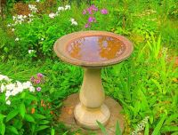 Bird bath surrounded by Phlox, Irises and Lilies.