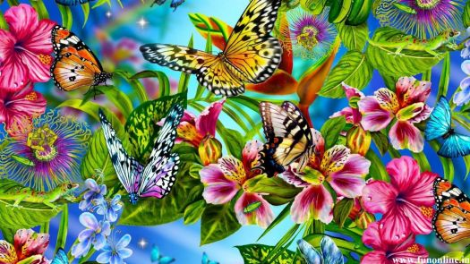 Butterflies & Blossoms