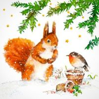Lovely bird and squirrel