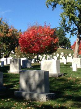 Arlington National Cemetary, Oct 2014