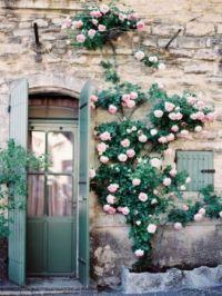 Dreamy Doorway