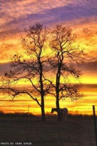 Only in Oklahoma Sunset by Vern Spain